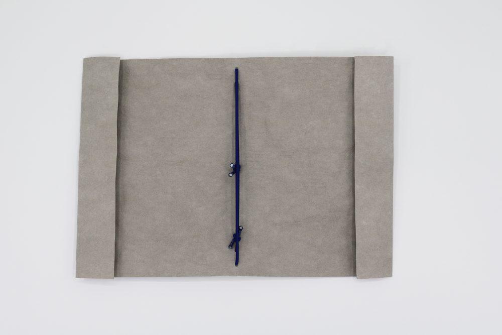 paapir book cover